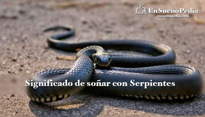 sonar-con-serpiente