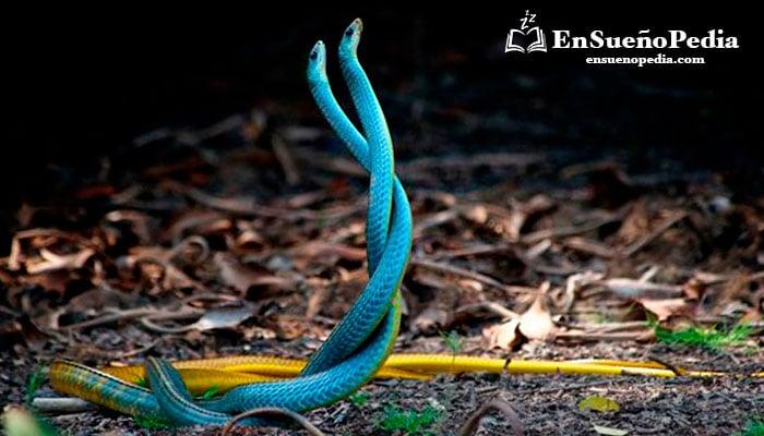 interpretacion-sueno-con-muchas-serpientes