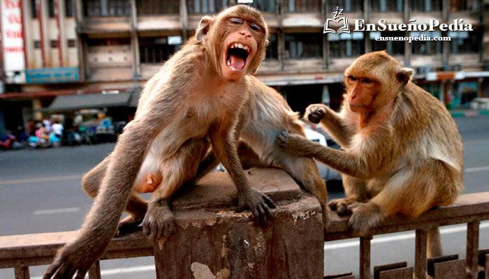 sonar-con-mucos-monos
