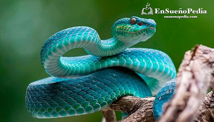interpretar-sueno-serpientes