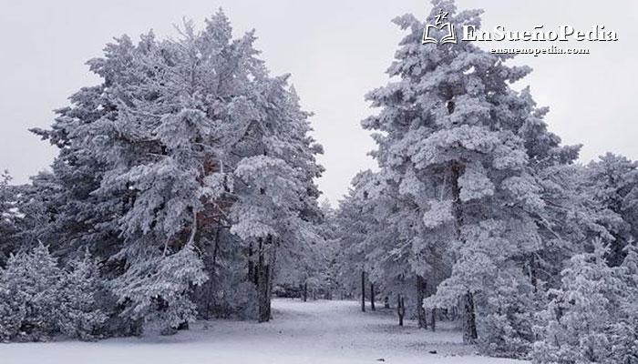 tiene-significado-sonar-con.nieve