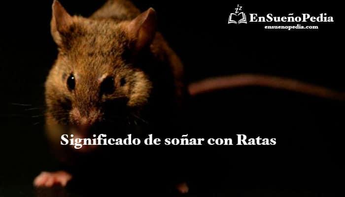 significado-de-suenos-con-ratas