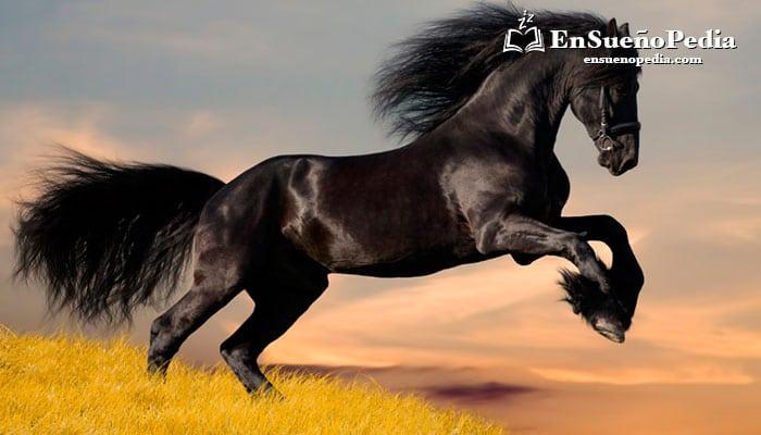sonar-con-caballo
