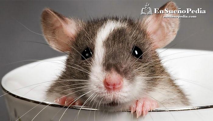 significado-de-suenos-con-ratones