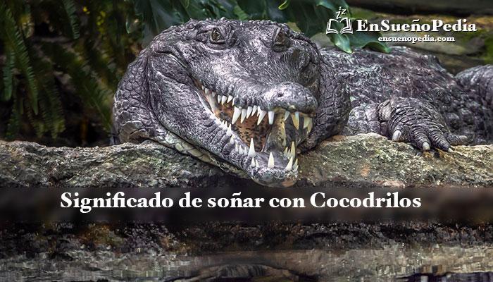 significado-de-suenos-con-cocodrilos
