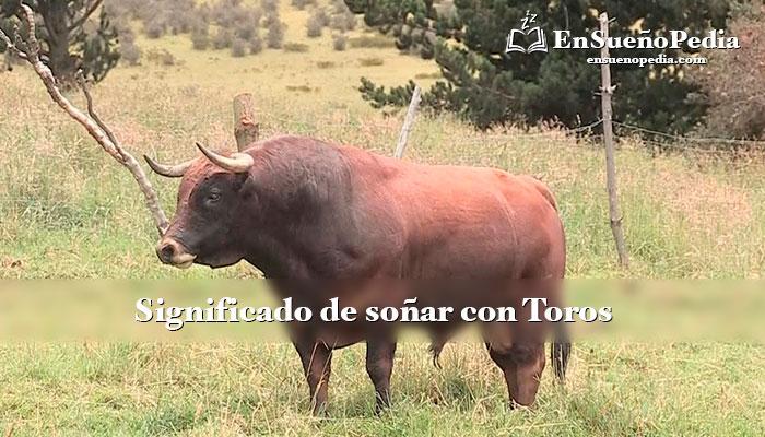 sueno-con-toros