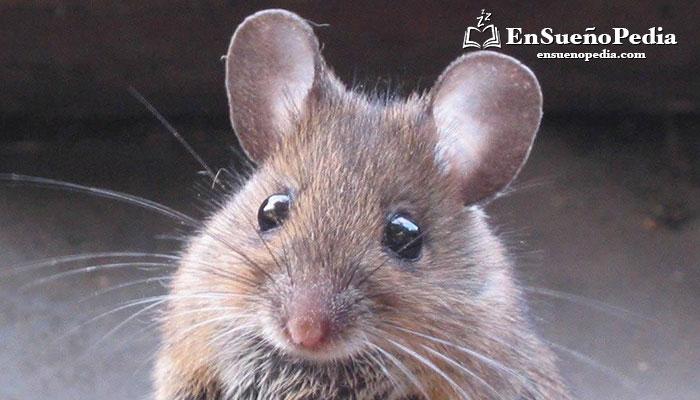 suenos-con-ratones