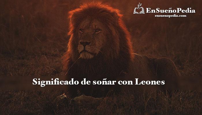 significado-sonar-con-leones